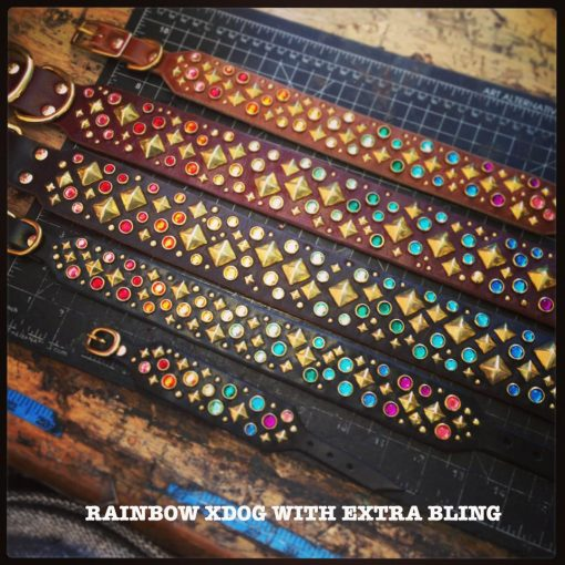 xdog-rainbow-extra-bling - text - FOR SITE
