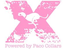 xlogo-Paco-pink-sm